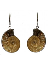 AMMONITE FOSSIL EARRING